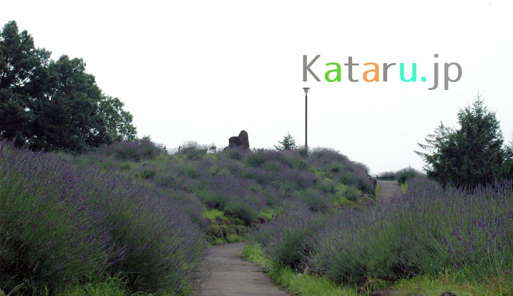 scenery-shirasagiparkl1024x