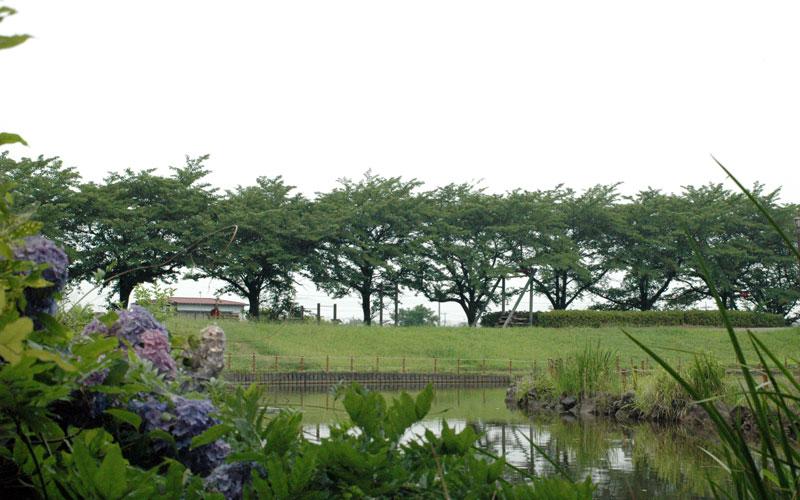 shirasagipark-garally2